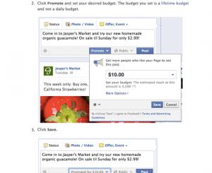 facebook promoted posts, facebook sponsored stories, facebook native advertising